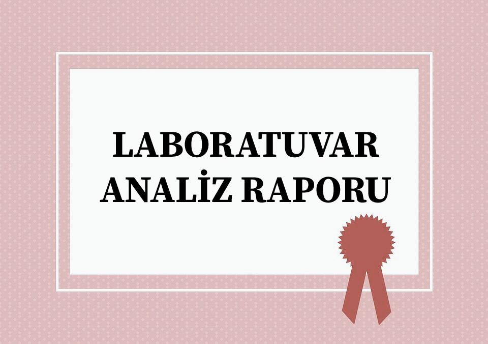 Laboratuvar Analiz Raporu